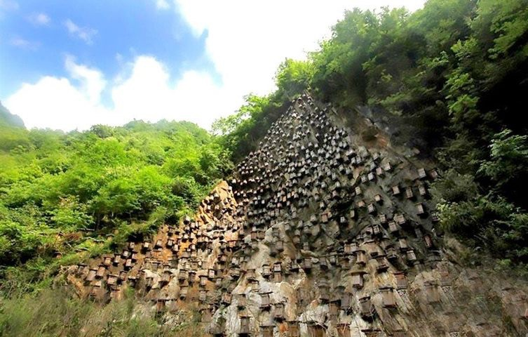 """The Wall of Hives: the """"home of Chinese bees"""""""