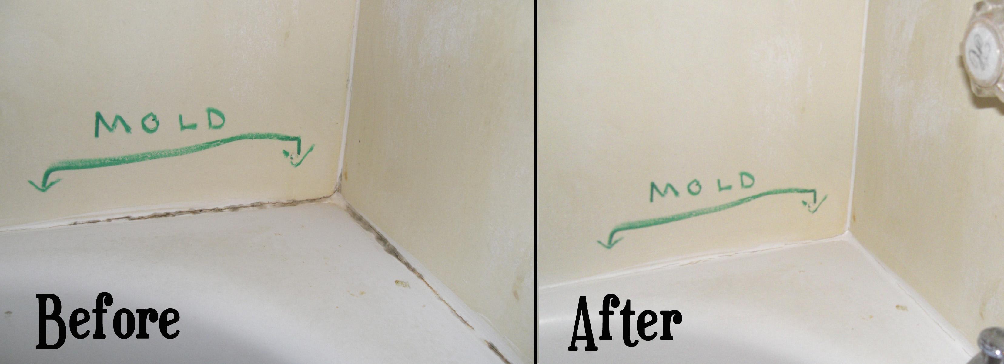 Flashback Cleaning Mold Stains From Bathtub Caulk