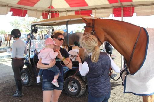 Meeting Grandmas horse
