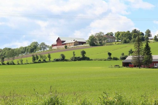 Farms in Ringsacker