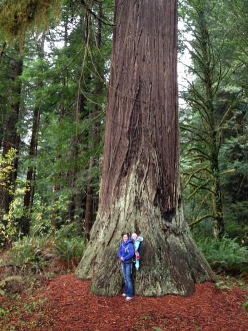 Ry and Jocelyn with the redwoods