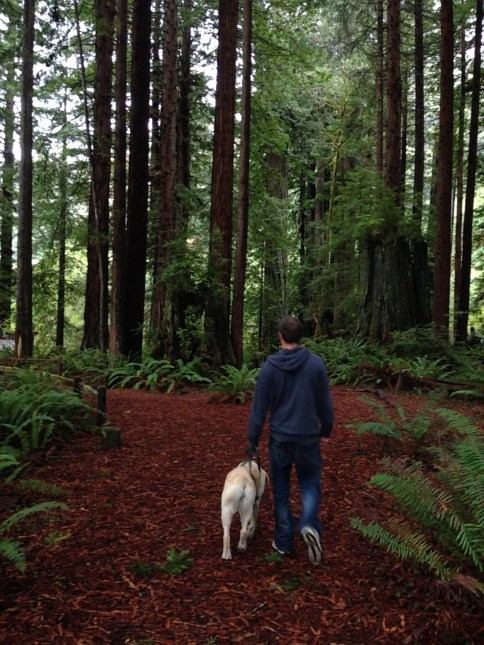 Nixon and Josh out for a walk in the forest