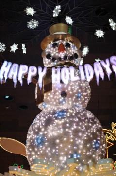 Happy Holidays from Disneyland