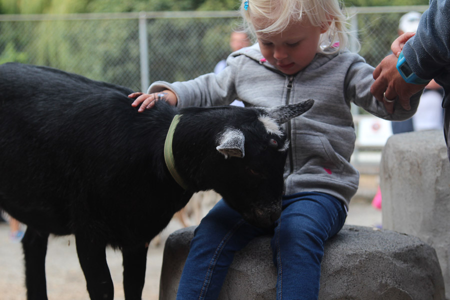 Petting zoo Victoria.