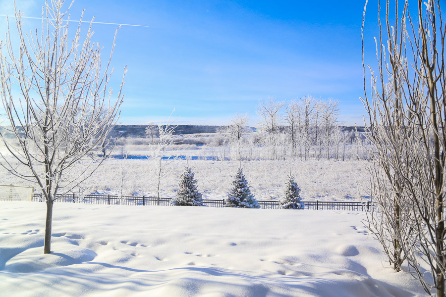 White Christmas in YYC