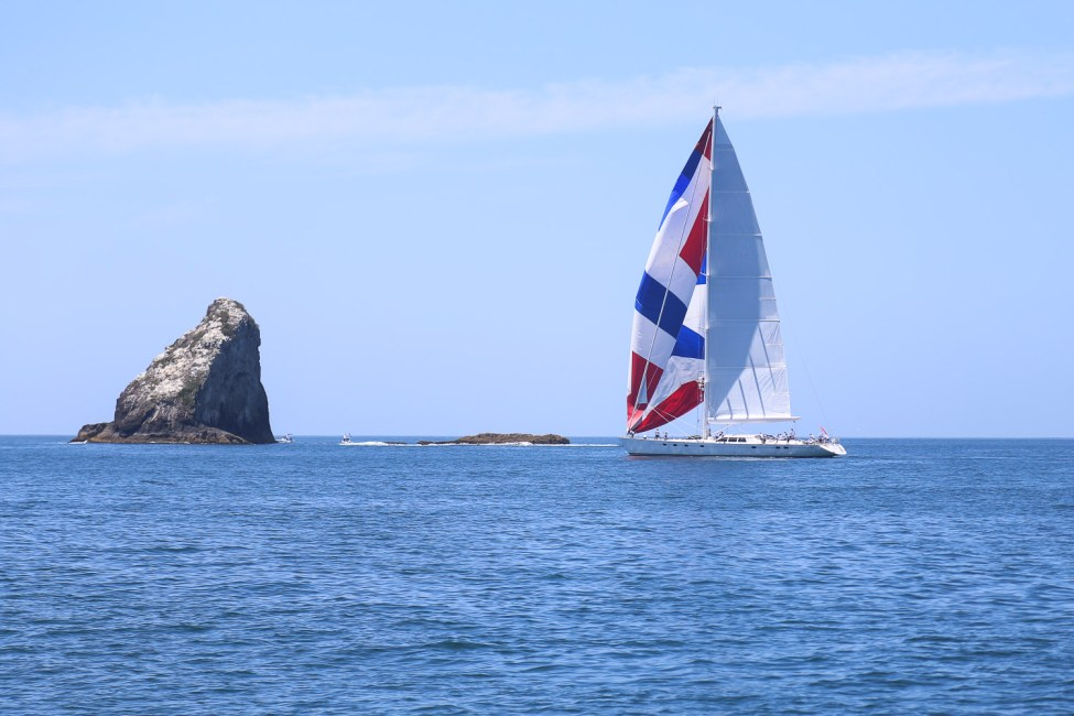 bay of islands regatta