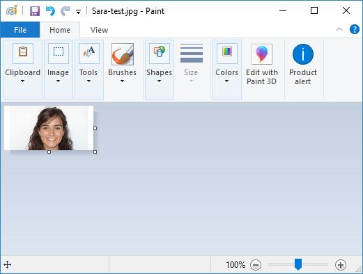 Display Bitmap Images OLED convert image