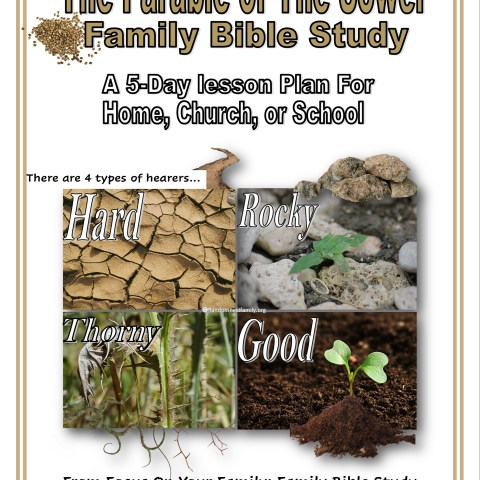 Parable of The Sower Title Image @randomnestfamily.org