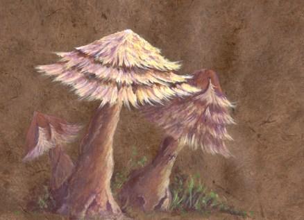 Feather mushrooms