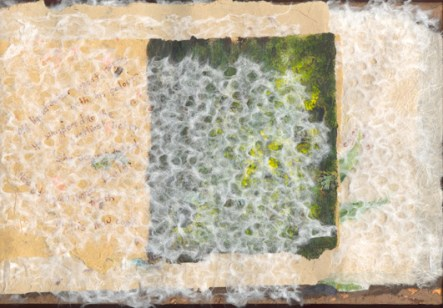 Lichen & moss interleaves