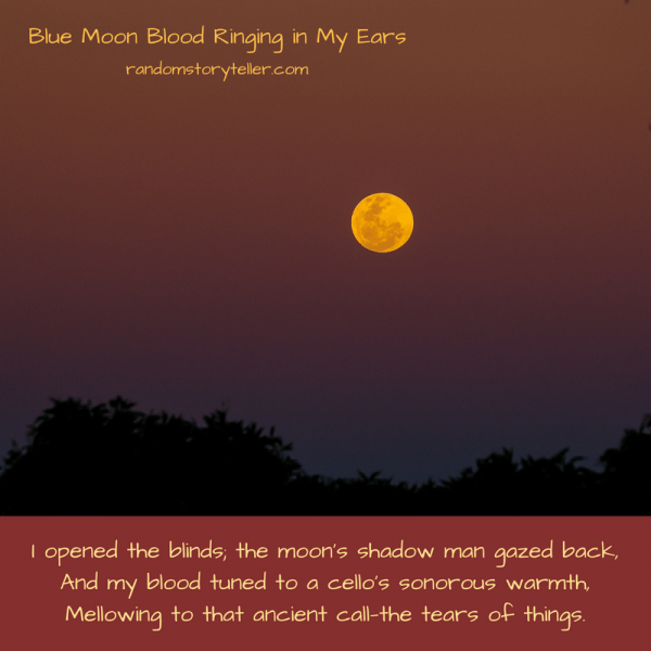 Quote from poem Blue Moon Blood Ringing in My Ears by randomstoryteller chamrickwriter with moon image