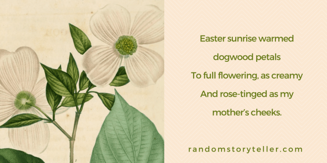 Quote from poem by randomstoryteller chamrickwriter with illustration of dogwood