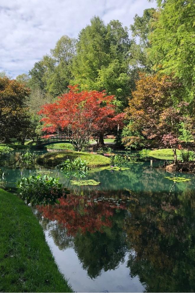 Japanese Gardens_Gibbs Gardens_Ball Ground GA_chamrickwriter_randomstoryteller