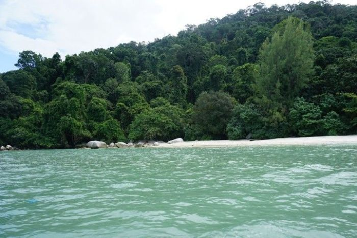 Monkey Beach desde el barco