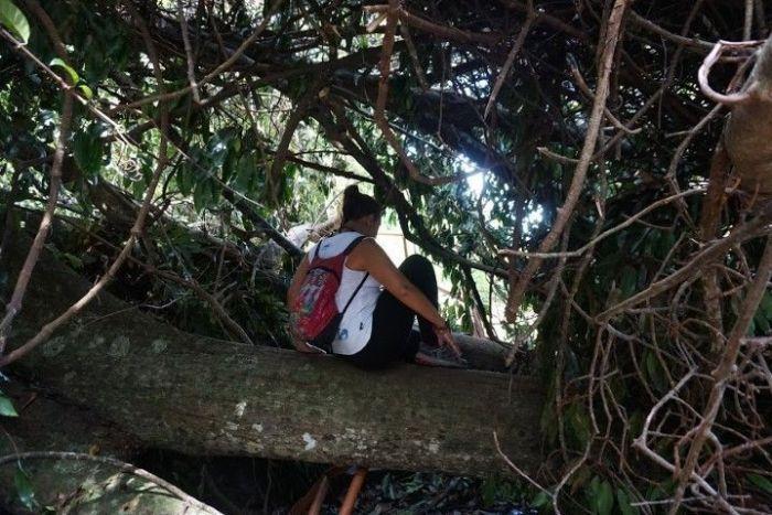 De camino a la Monkey Beach, ¡pasando todos los obstáculos! :)