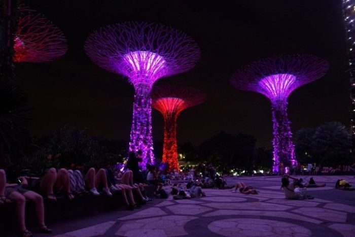 Disfrutando del espectáculo de luces y sonido en los superárboles (Gardens by the Bay)