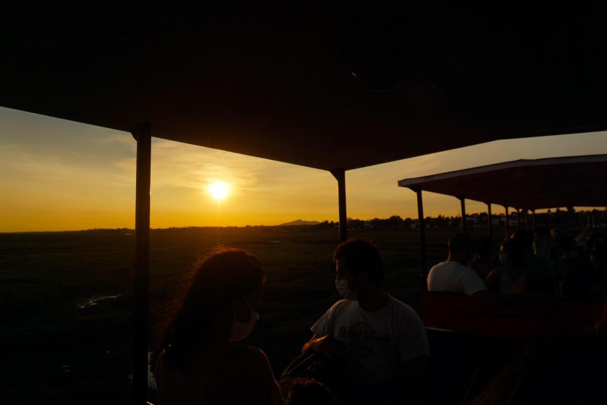 El tren al atardecer, pasando por los paisajes increíbles del Parque Natural da Ría Formosa