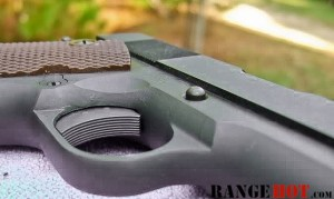 rh-10