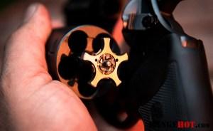 Charter Arms Pitbull-5