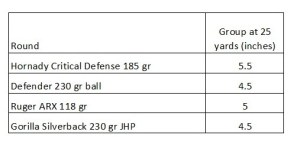 Charter Arms Pitbull .45 auto accuracy