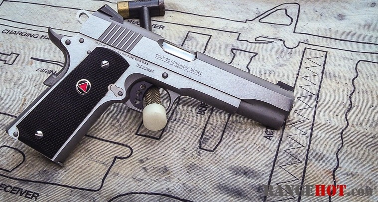 Case head support in Colt Delta Elite  - Range Hot