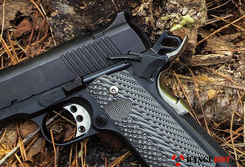 Desert Eagle 1911 C 9mm More Than Just A Range Gun Range Hot