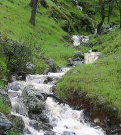 Rangeland Streams Water Quality Conditions Grazing To Enhance Conditions California