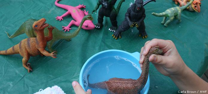 Dino taking bath