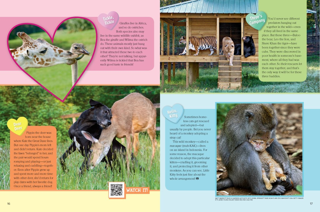 Ranger Rick Animal Buddies February 2015 2