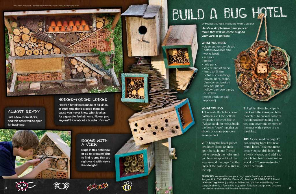 Ranger Rick Bug Hotels June July 2014 2