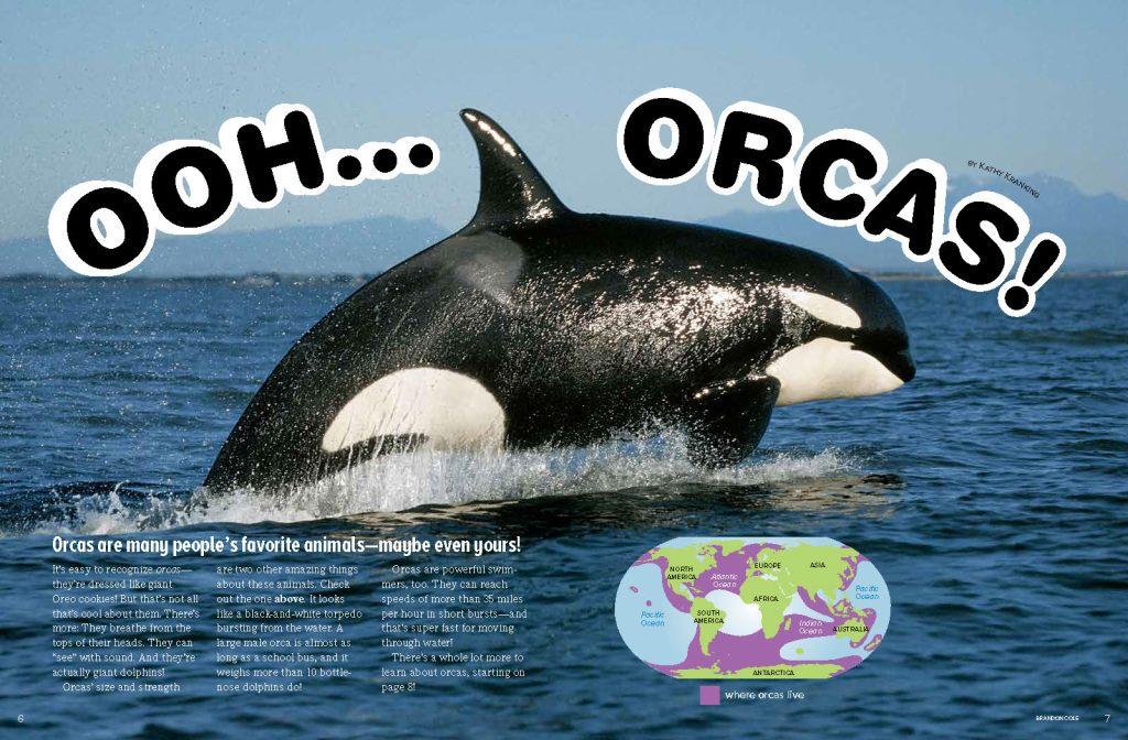 Ranger Rick Orcas March 2015 1