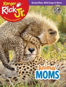 May 2018 RR Jr. Cover