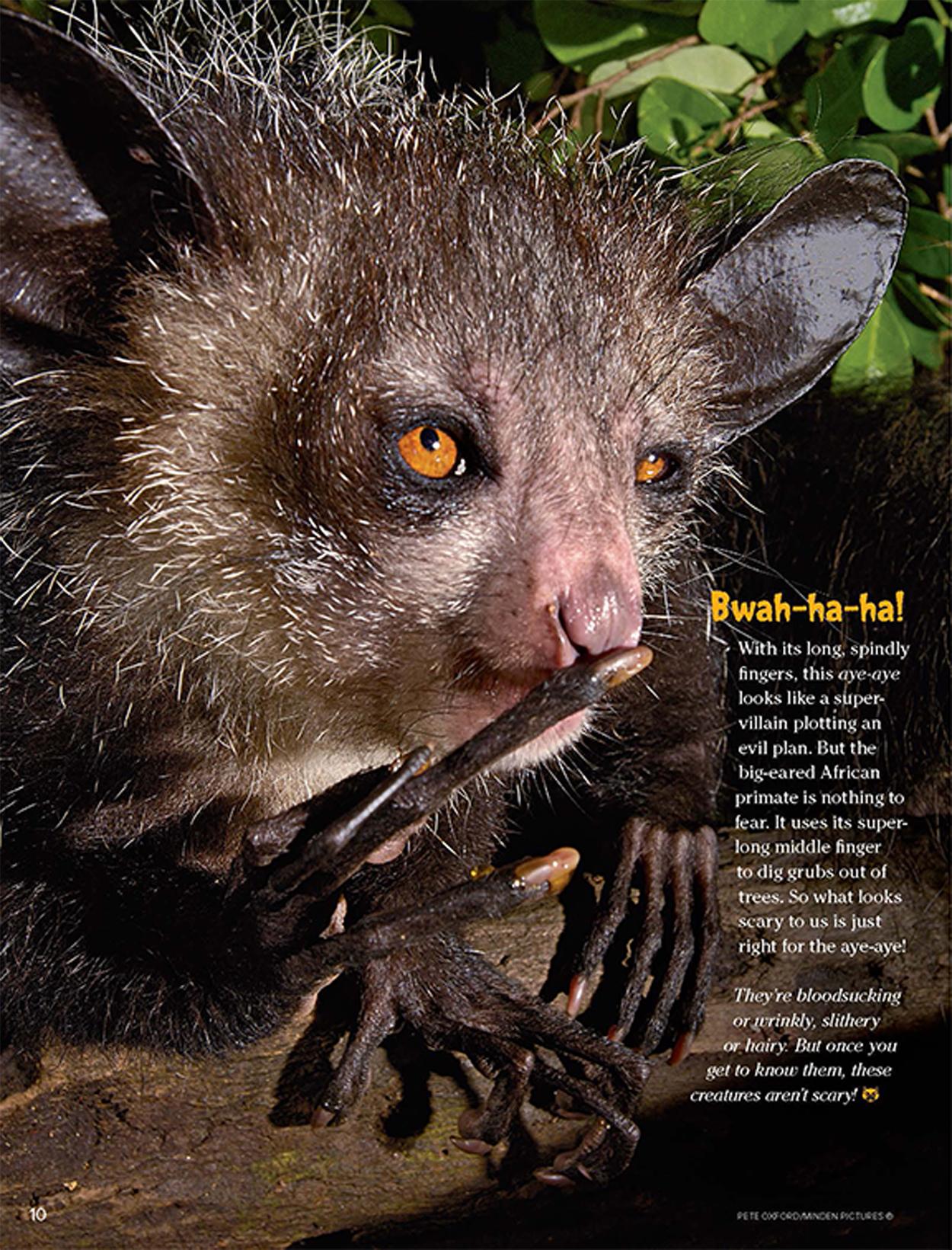 animals scary rick ranger aye ha bwah its