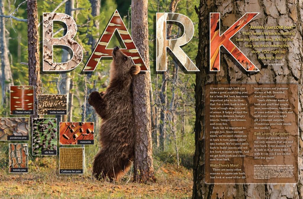 Ranger Rick Bark March 2016 1