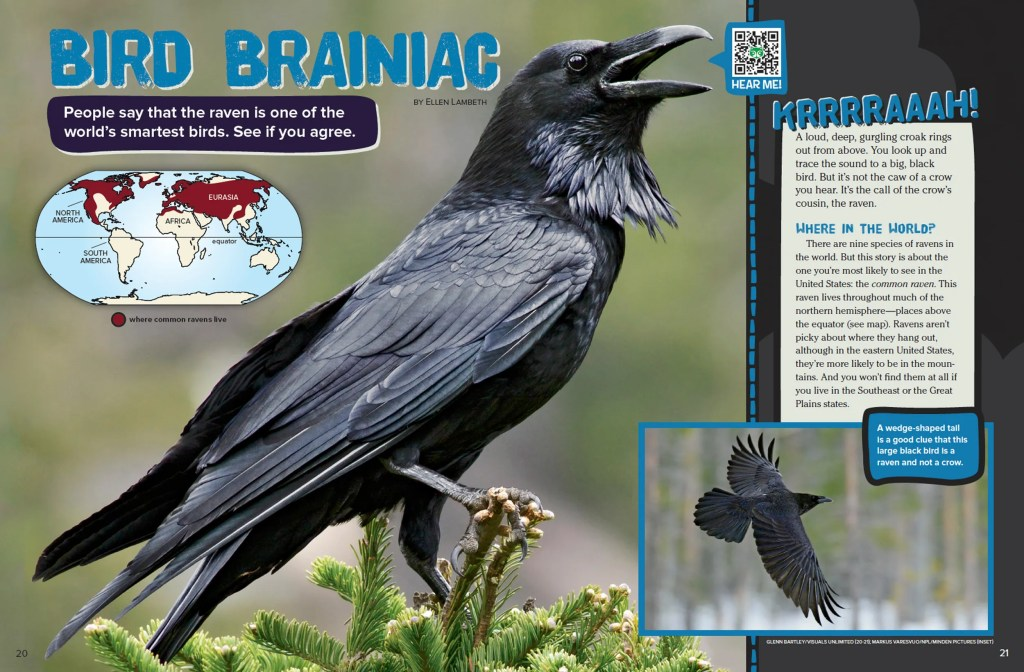 Ranger Rick Bird Brainiac October 2015 1