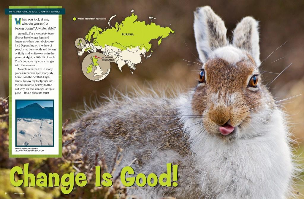 Ranger Rick Bunny March 2015 1