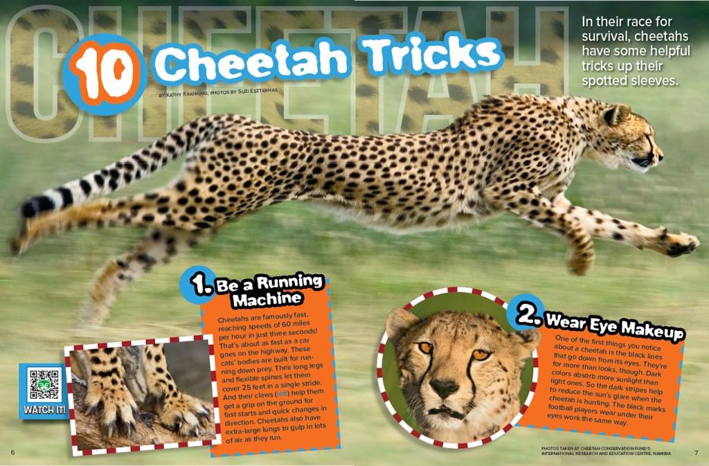 Ranger Rick Cheetah Tricks September 2015 1