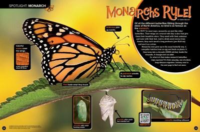 Ranger Rick Monarchs Rule September 2015 1
