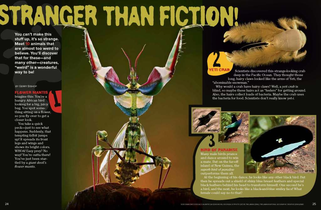 Ranger Rick Stranger than Fiction September 2014 1