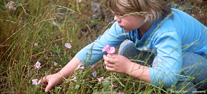 Child picking flowres