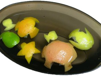 floating fruit fish