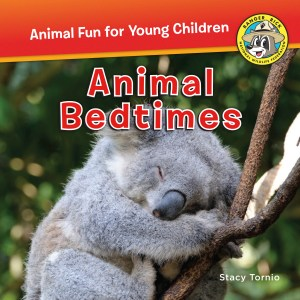 Animal Bedtimes