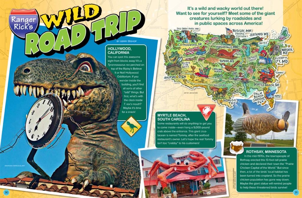 Wild Road Trip JJ 2018 RR-1
