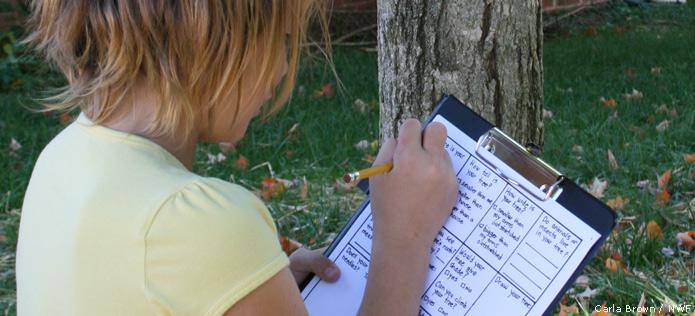 tree journal checklist