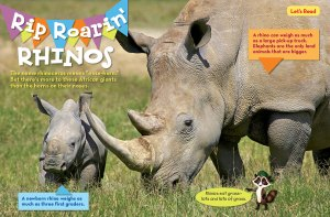 rhino spread 1