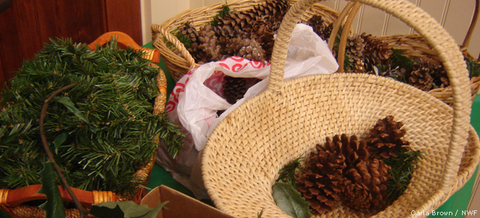 Decorate a Wreath for Birds - NWF | Ranger Rick