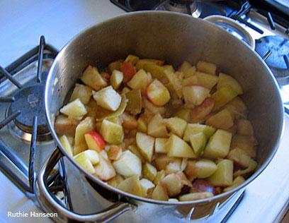 apple sauce 3