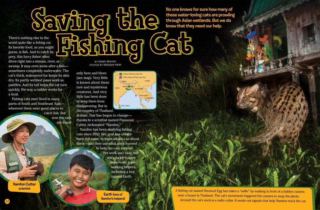 Fishing Cats Sept 2018 RR