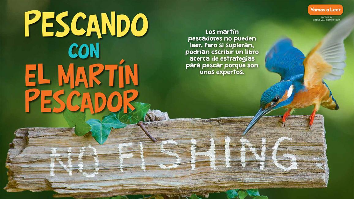 Pescando con el Martín Pescador