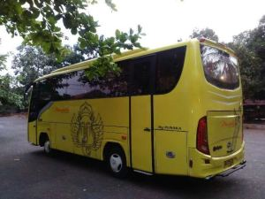 harga rental bus mini